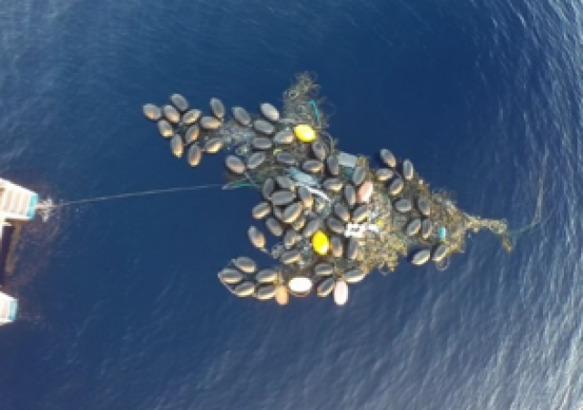 """Figure 2. Plastic """"island"""" in the North Pacific Gyre. Expedition summer 2014."""